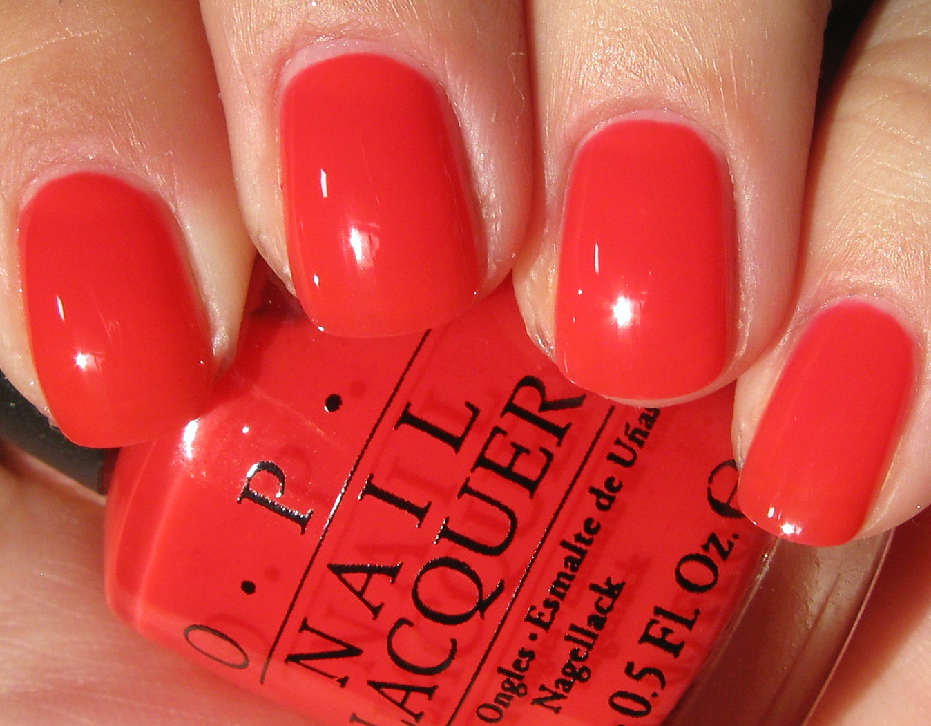 Kelliegonzo Opi Texas Collection The Sorbets
