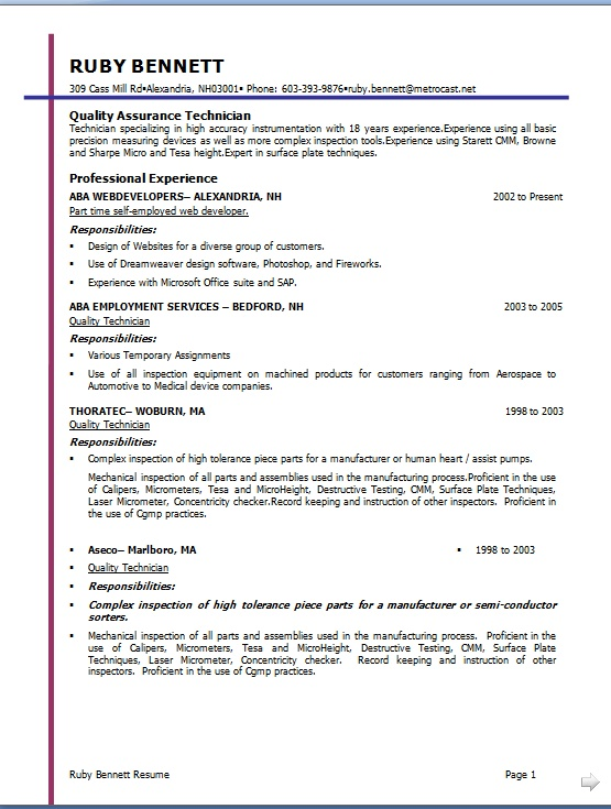 software developer resume model in word format free download