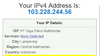 melihat ip address