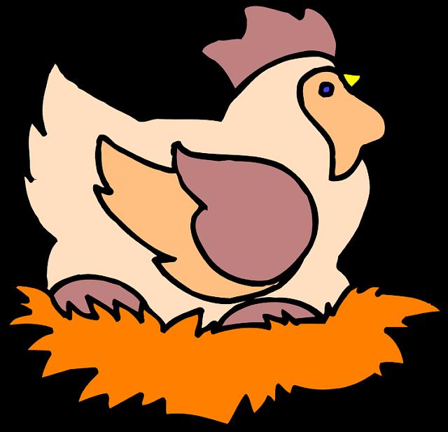 Ayam Betina Bertelur Dengan Pejantan Tetangga, Siapa Pemilik Telur?