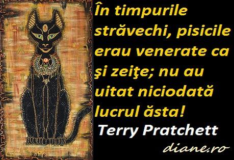 citate despre pisici Pisicile în citate, maxime, aforisme, proverbe   diane.ro citate despre pisici