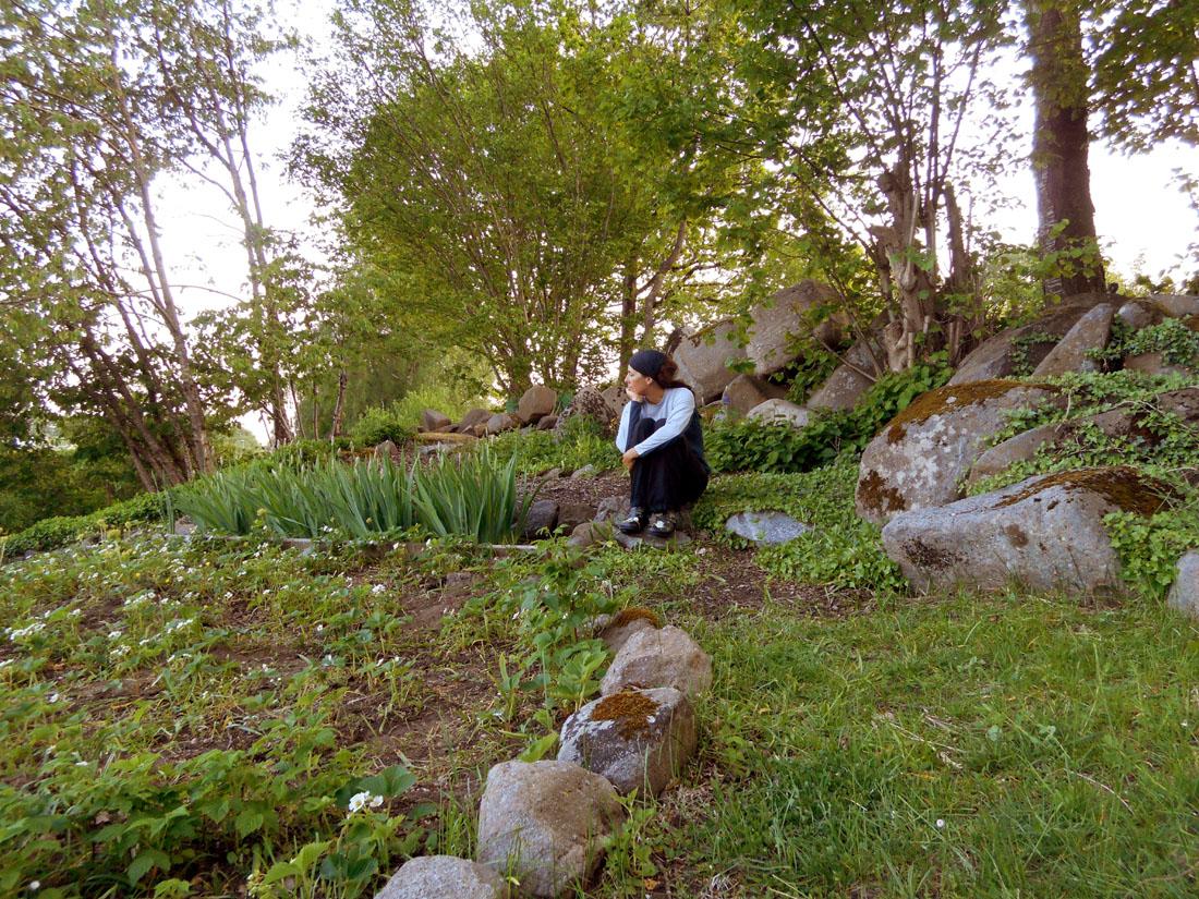 In attesa della fioritura degli iris :-)