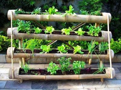 bertani sayur-mayur secara vertikultur memanfaatkan bambu