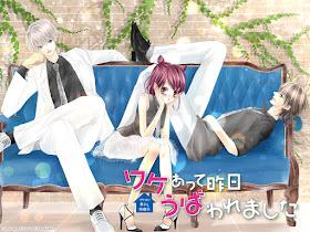 Wake Atte Kinou Ubawaremashita de Rina Yagami
