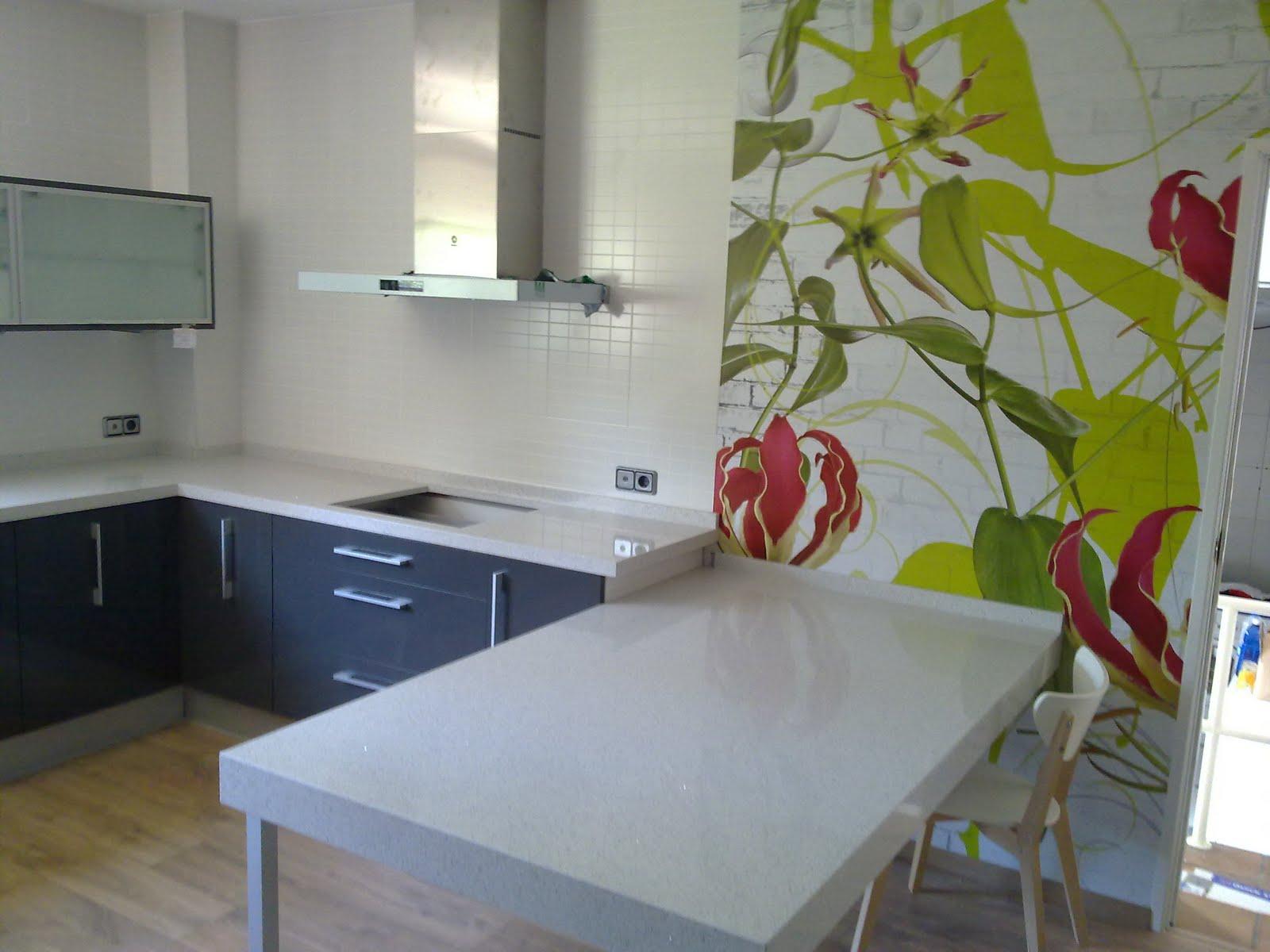 2011 - Fotomural para cocina ...