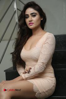 Telugu Actress Model Sony Charishta Stills in Short Dress at Rapture 2017 Grand Logo Launch  0060.JPG