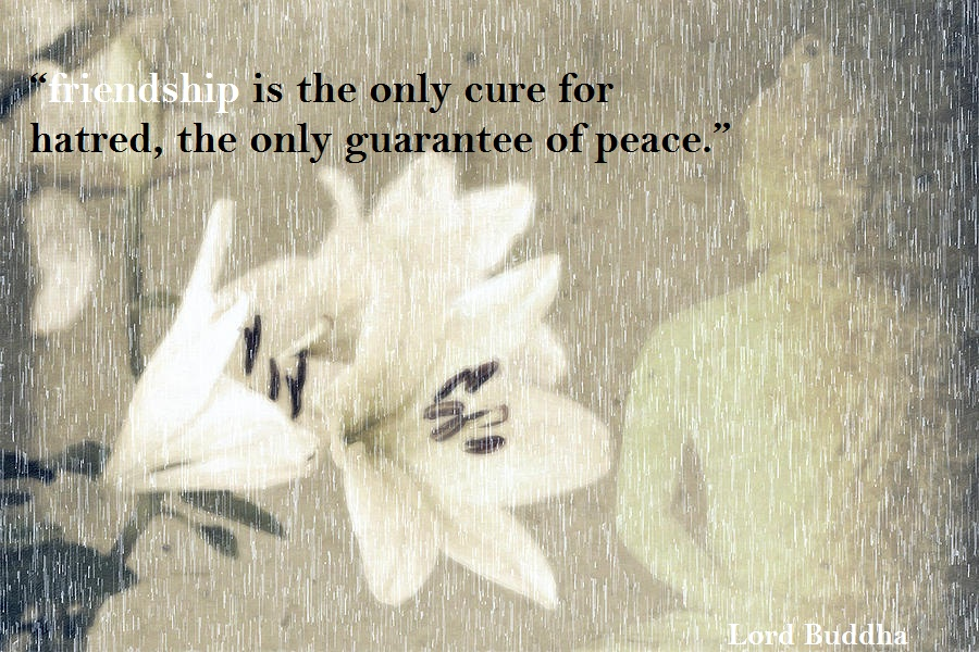 Buddha Quotes Online: Buddha Saying : friendship is the ...