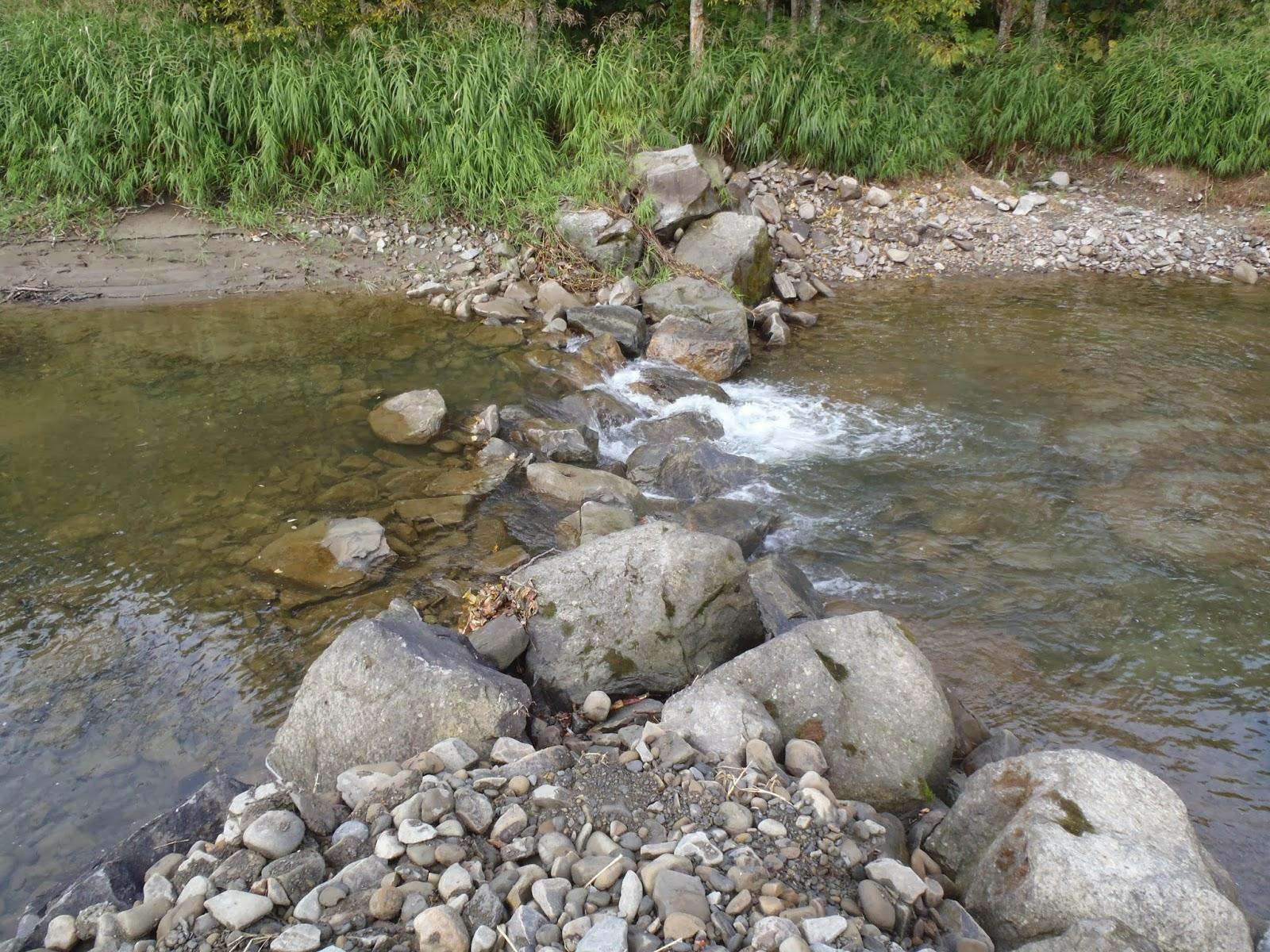 幾春別川そしてカヌー: 幾春別川...