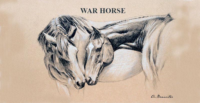 WAR-HORSE-MORPURGO