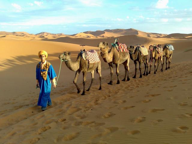 excursiones desierto marruecos