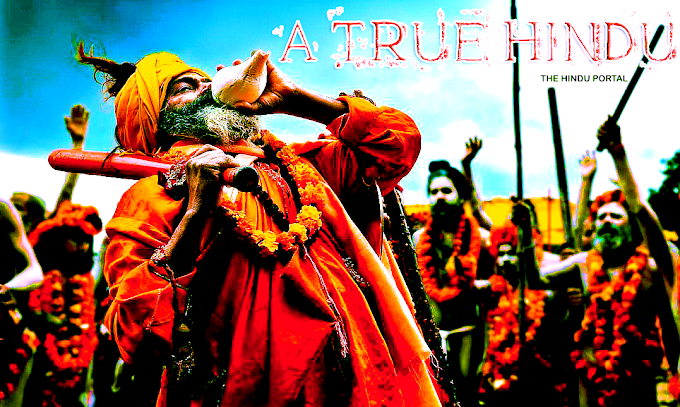 A True Hindu: The fact you should know in a modern view