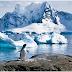 La Antártida se está volviendo verde a causa del cambio climático