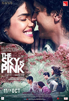 The Sky Is Pink (2019) Full Movie [Hindi-DD5.1] 720p HDRip ESubs Download