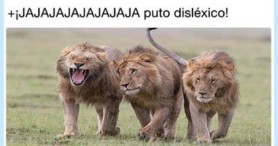 Leones en la sabana, me apetecen acelgas, ja ja, qué bueno el león disléxico. (gacelas)