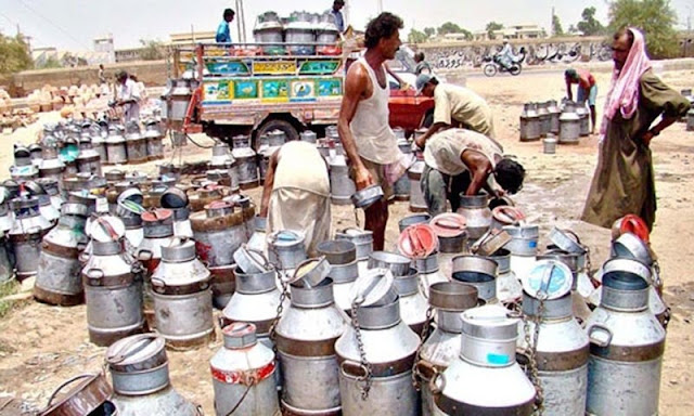 Pakistan may be running short on pasteurised milk: experts.