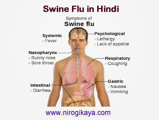 swine flu in hindi Complete information on swine flu including symptoms, causes, cure and treatment also get information on test, risk factors, home remedies, ayurvedic & homeopathic treatment for swine flu at thehealthsitecom.