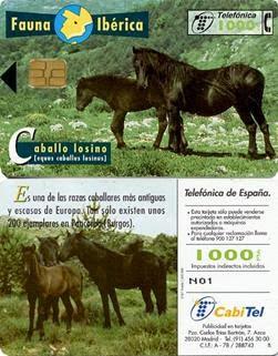 Tarjeta telefónica Caballo losino (Equus caballus losinus)