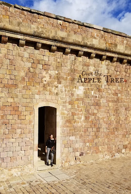 Barcelona, Spain, Over The Apple Tree