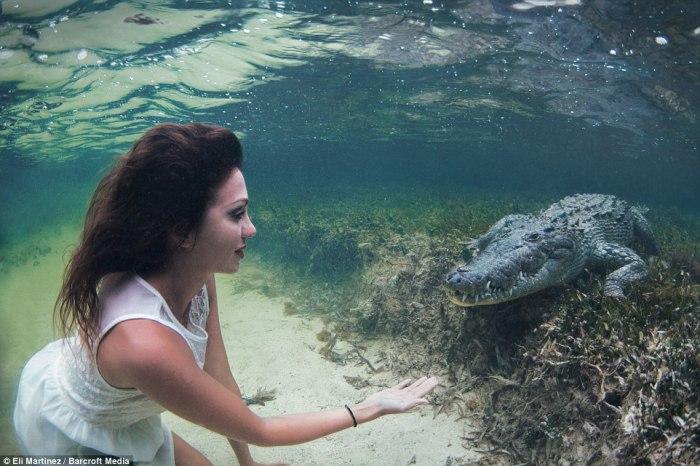 Gila!! Wanita Cantik Ini Cari Mati 'Selfie' Bareng dengan Buaya di dalam Air