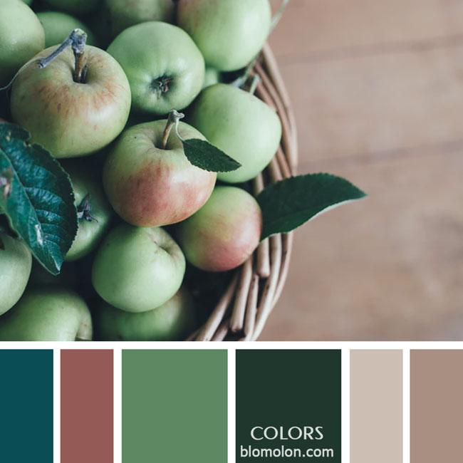 variedad_en_color_paletas_de_colores_28