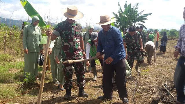 Distannak Abdya Manfaatkan 700 Hektar Untuk Program Tanam Terpadu