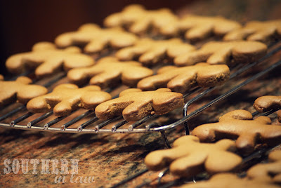 Low Fat Gingerbread Recipe