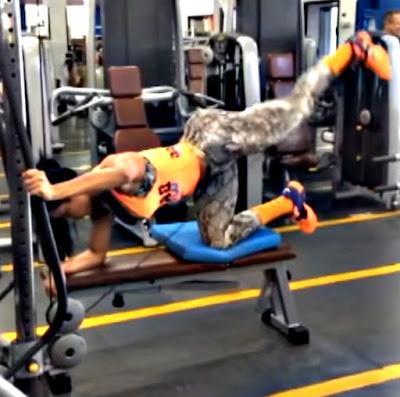 Patada polea cadera ejercicio cola mujer rutina