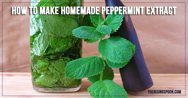 how to make peppermint extract from mint leaves