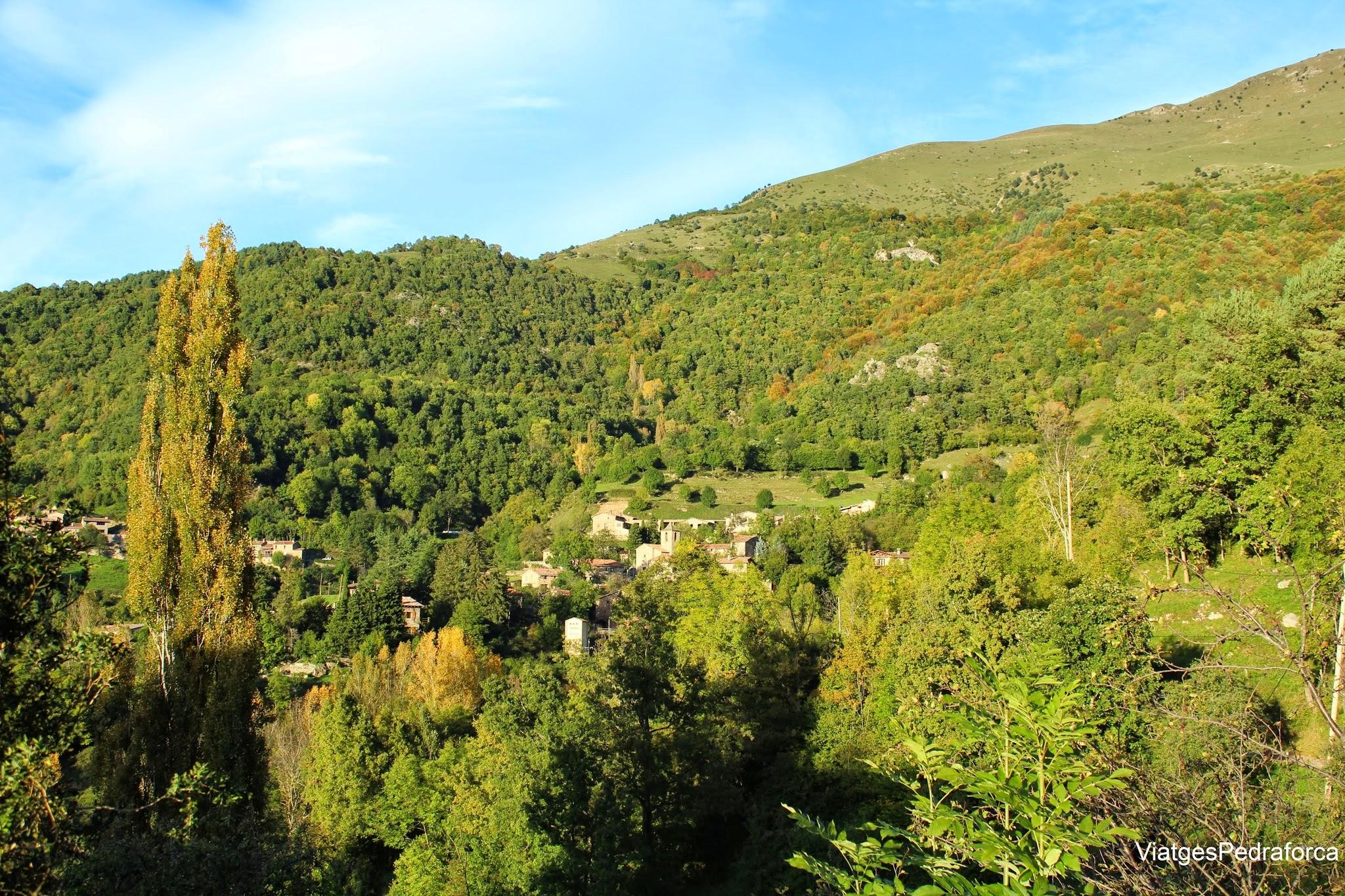 Bruguera Vall de Ribes Ripolles