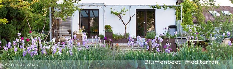mediterraner Garten, Blumenbeet mediterran, mediterrane Gestaltung für den Garten - mediterrane, pflegeleichte, schöne Blumenbeete