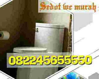 Mengatasi Wc Atau Toilet Mampet Gresik