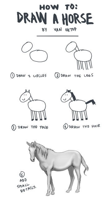 Funny How To Draw A Horse Picture Joke
