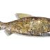 Peixe Mecânico Reciclado
