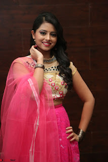 Geethanjali sizzles in Pink at Mixture Potlam Movie Audio Launch 017.JPG