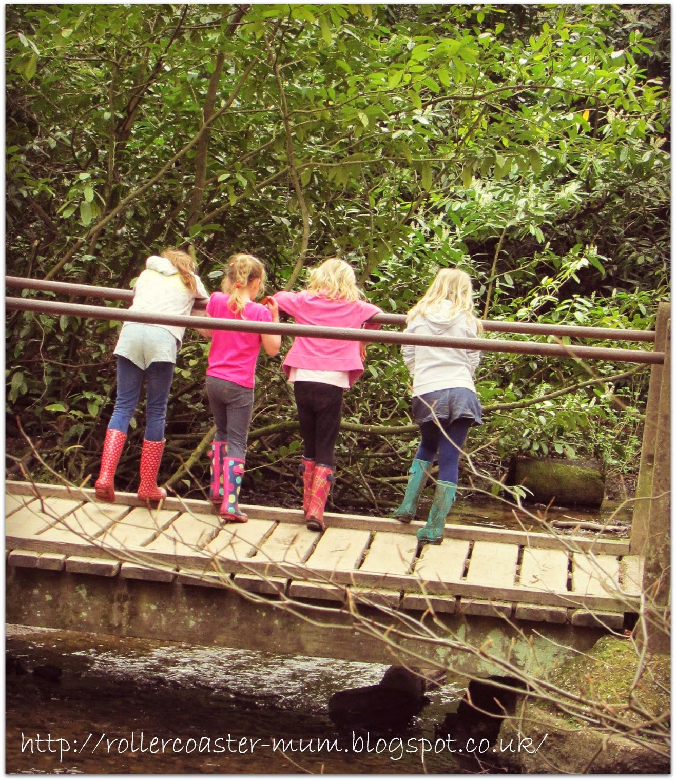playing Pooh Sticks at National Trust Waggoners Wells