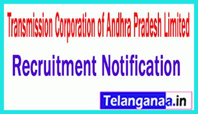 Transmission Corporation of Andhra Pradesh Limited APTRANSCO Recruitment Notification