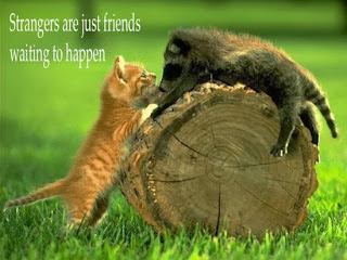 Quotes About Friendship (Depressing Quotes) 0031 10