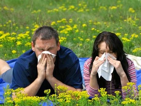 ¿Existe una cura real para las alergias?
