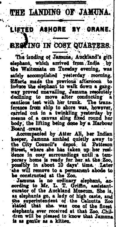 The First Lady of Auckland Zoo: Jamuna the Elephant