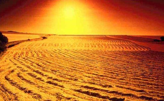 Apakah Benar Bumi Ini Kelak Menjadi Padang Mahsyar? Baca Penjelasan Ini