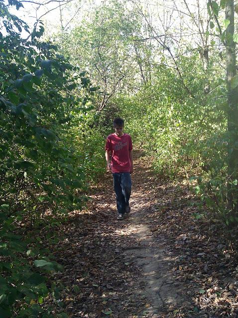 hiking around the woods