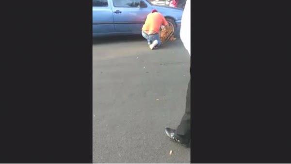 VIDEO: Automovilista se deshace de araña inmovilizadora con un esmeril