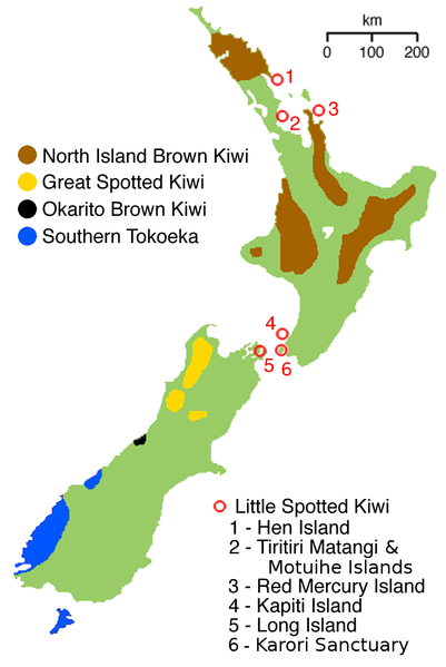 Map showing how kiwis are distributed in New Zealand