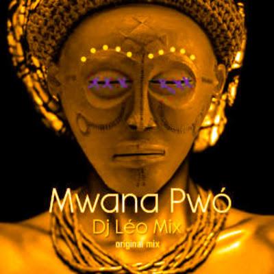 Dj Léo Mix - Mwana Pwó (Original Mix).jpg