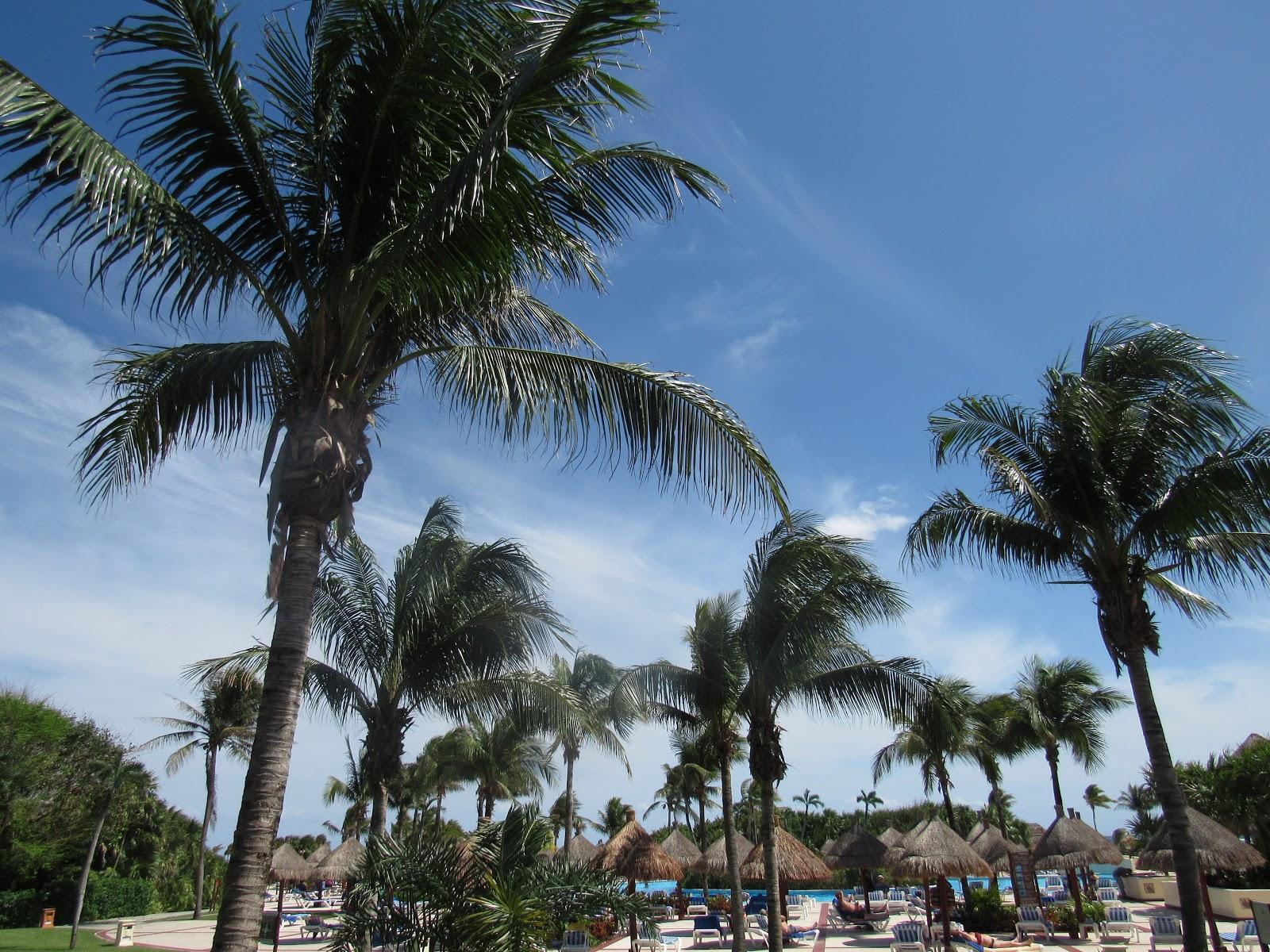 Riviera Maya, Mexico - wanderlustvita.com