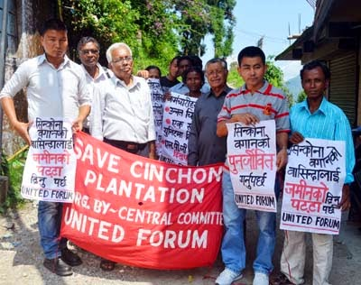 save cinchona plantation by united forum