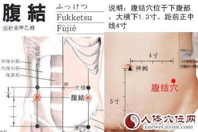腹結穴位 | 腹結穴痛位置 - 穴道按摩經絡圖解 | Source:xueweitu.iiyun.com