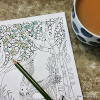 Grown up colouring book