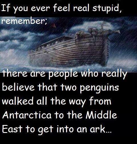 If you ever feel real stupid, remember creationism pictures