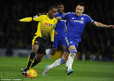 IGHALO + TERRY